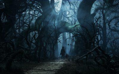 Cahiller Gezegeni – 4. Program – Karanlık Ormanın Kara Koy(u)nunda